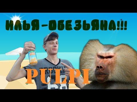Секс с обезьяной смотреть порно видео онлайн