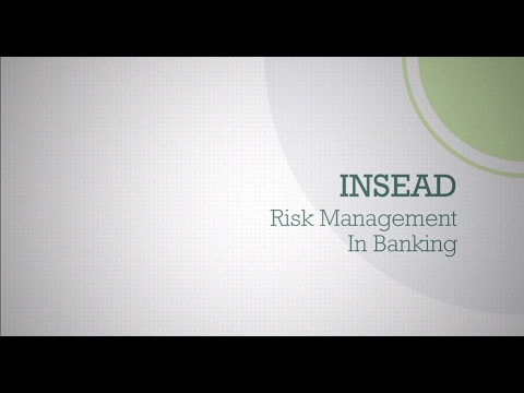 INSEAD Risk Management in Banking
