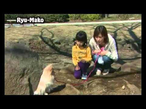 [Fanvid] You found me - Inu wo kau to iu koto (drama)