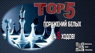 ТОП-5 ПОРАЖЕНИЙ БЕЛЫХ ЗА 5 ХОДОВ! МАСТЕРА И ГРОССМЕЙСТЕРЫ ПРОИГРЫВАЮТ В 5 ХОДОВ В ШАХМАТЫ