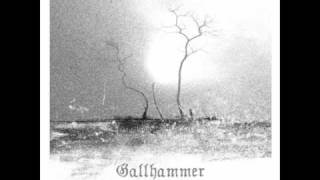Gallhammer - At The Onset Of The Age Of Despair