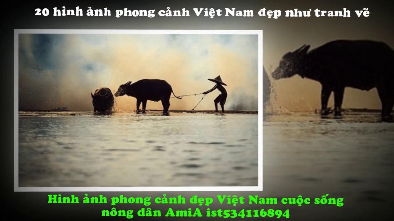 20 hình ảnh phong ảnh Việt Nam đẹp như tranh vẽ
