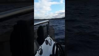 Рыбалка на пару часов на Вуоксе.