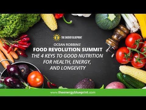 Food Revolution Summit │ The 4 Keys to Good Nutrition  w/ Ocean Robbins & Ari Whitten