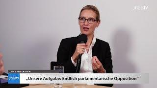 Ein Blick in die neue AfD-Fraktion - Christian Vollradt trifft Alice Weidel