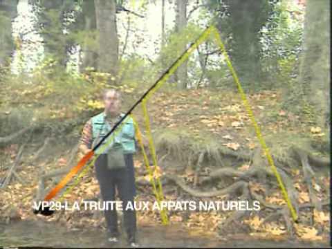 video peche truite appat naturel