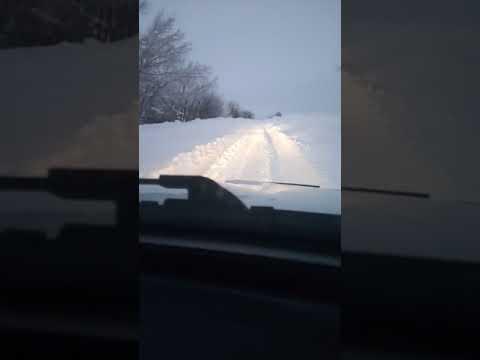 Ужас на дороге