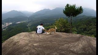 那山,那人,那狗,那情,那景,画面太美却终将成为追忆!发布中华田园...