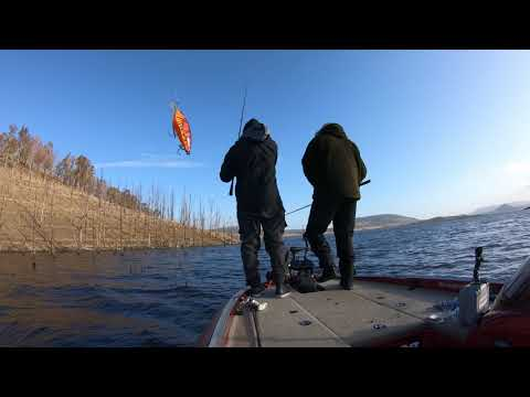 Pike Fishing At La Serena Lake In Spain - #BigPikeDREAMS Episode 13