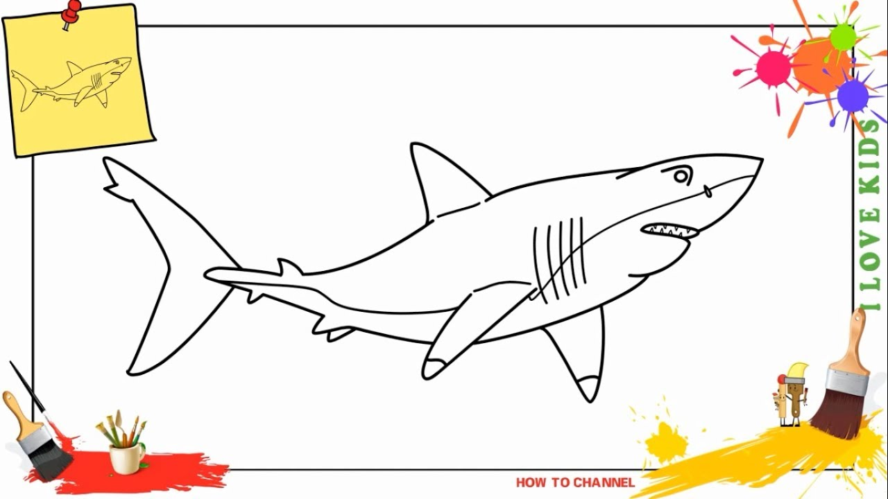 How To Draw A Great White Shark 5 Easy Step By Step For Kids