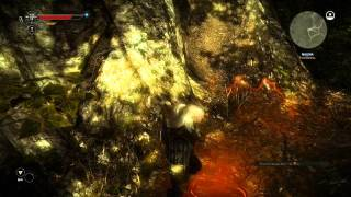 The Witcher 2 - Find Malena