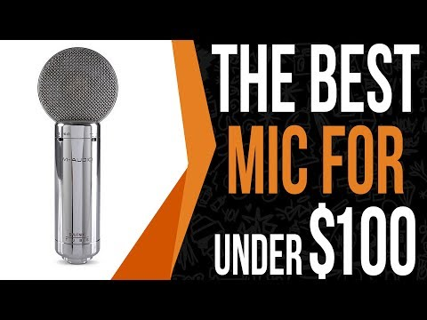 Best Rap Microphone For $32 - Comes W/ Software