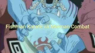 fishman karate v merman combat wikia