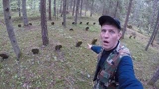 Обнаружил ЛЮТУЮ ЖУТЬ в лесу! Думал это какие то бугорки, а оказалось...