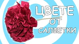Лесно Оригами Цвете от Салфетки Инструкция