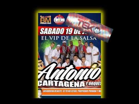 antonio cartagena concierto solo audio By TEKOSOUND