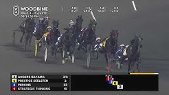 Woodbine, Mohawk Park, November 2, 2019 Race 3
