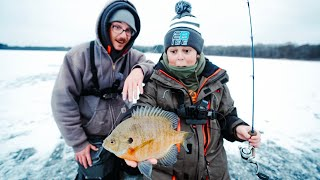 FIRST TIME Fishing EARLY Minnesota Ice!!! (Rare Catch)