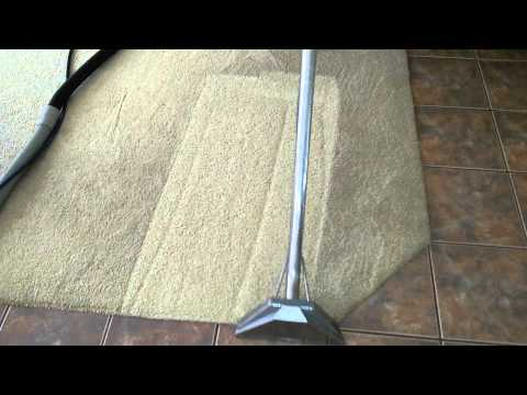 Carpet Tek deep clean
