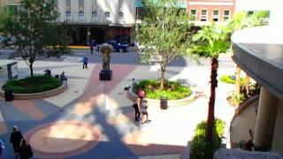 № 2398 США Кинотеатр Plaza Cinema Cafe Орландо Флорида