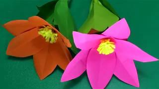 How to make Flower with paper at home for decoration. DIY Flower Paper