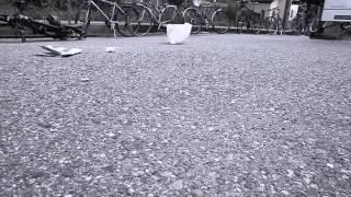 Mimiks - Grau