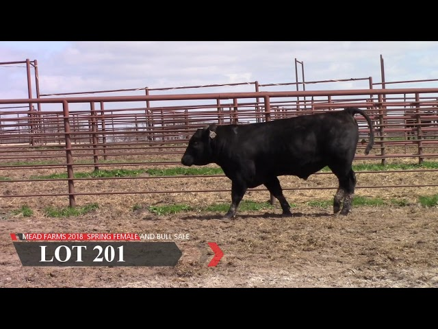 Mead Farms Lot 201