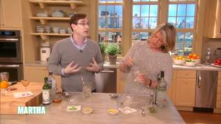How To Mix A Dry Martini⎢martha Stewart