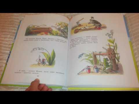 Сказки и картинки В. Сутеева.  Сказки Сутеева.