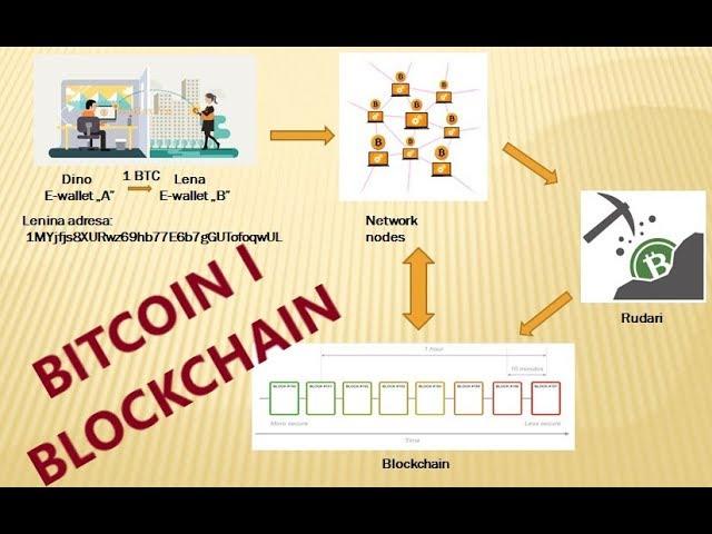 Bitcoin vs kriptovaliuta - 5 populiariausi skirtumai (su infografika)