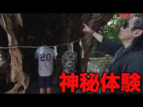 オカルト部|霊能者クロ戌氏オススメ最強パワースポットの来宮神社へ…お賽銭にしてはダメなお金は?