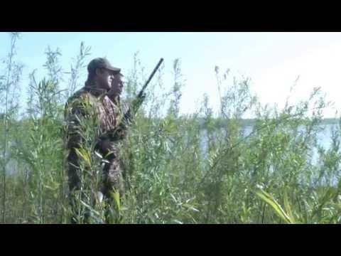 Early Season Teal Hunting Tips - Iowa DNR