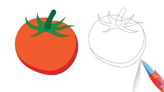 How to Draw a Tomato Drawing Step by Step - Coloring Page