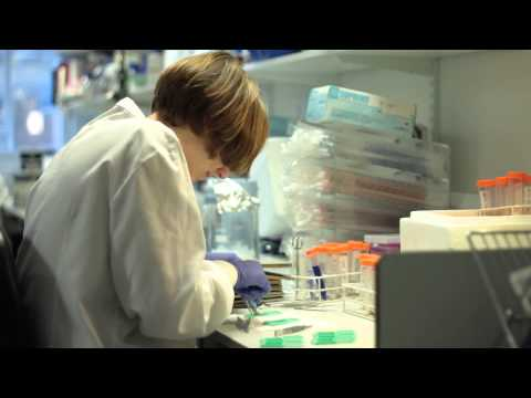 Pancreatic Cancer Spread   Cancer Research UK