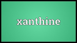 Xanthine Meaning