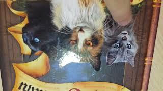 Мои книги коты воители