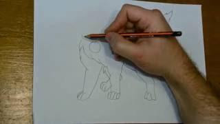 Рисую собачку Вольта.
