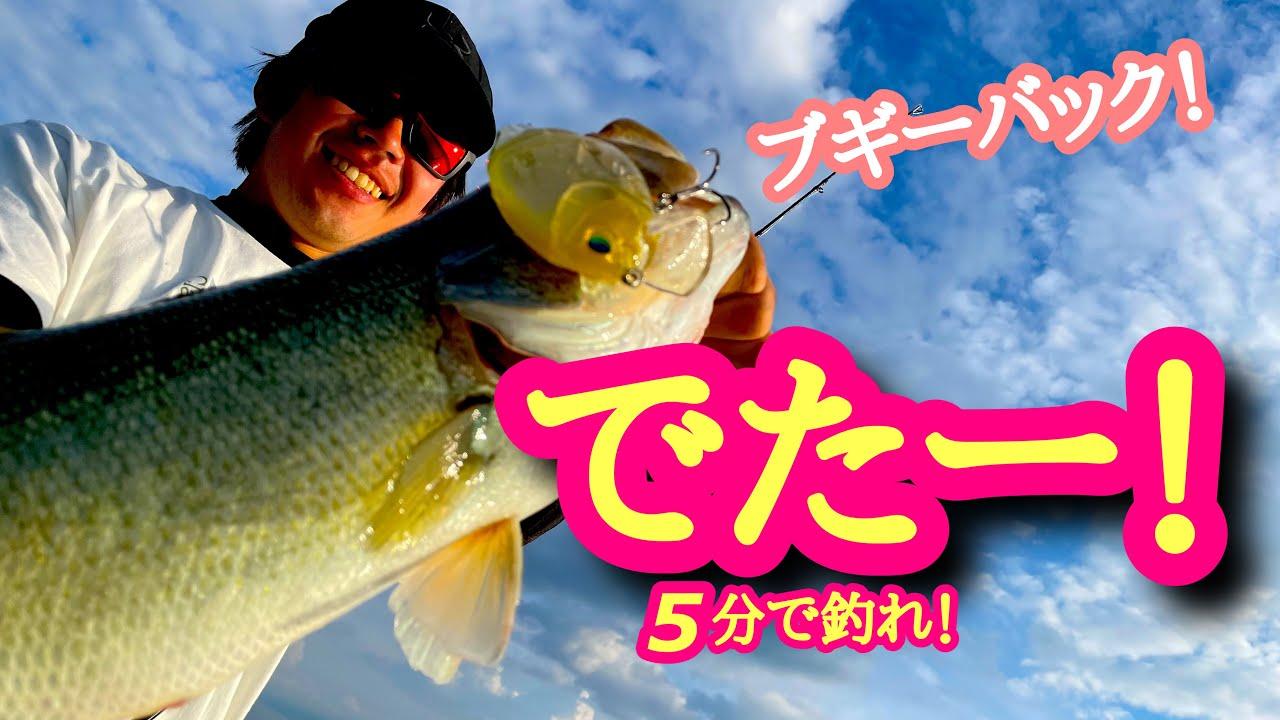 【5分で釣れ!2021.6.14】でたー!?【琵琶湖バス釣り】