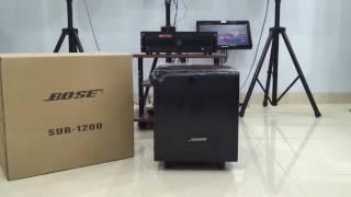 Đập Thùng Loa Sub Bose Model Sub-1200
