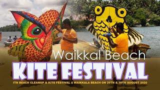 Go Fly A Kite! ITN Kite Festival & Beach Cleanup 2020