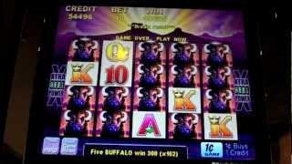 Aristocrat - Buffalo Slot Stampede Over 1000x my bet!! - Parx Casino - Bensalem, PA
