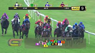 Vidéo de la course PMU PRIX CLASS 2