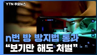 """""""불법 촬영물, 보기만 해도 처벌""""...n번 방 방지법 통과 / YTN"""