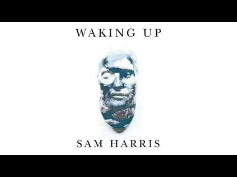 Sam Harris on Capitalism, Labor-for-Income and the ultimate labor saving device