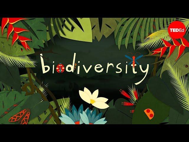Biodiversity - English ESL video lesson