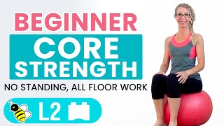 BEGINNER CORE | 15 Minute STABILITY BALL Workout for BEGINNERS