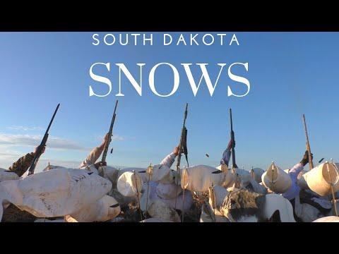 South Dakota Snows!!!