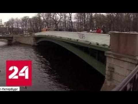 В Петербурге реставрируют знаменитых грифонов с Банковского моста - Россия 24