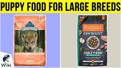 10 Best Puppy Food For Large Breeds 2019
