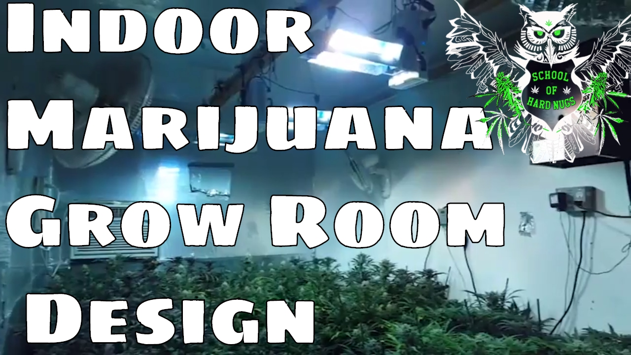 Indoor Marijuana Grow Room Design Documentary | Building ...